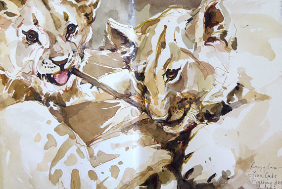 Southern Africa sketchbook - lion cubs fighting over a stick